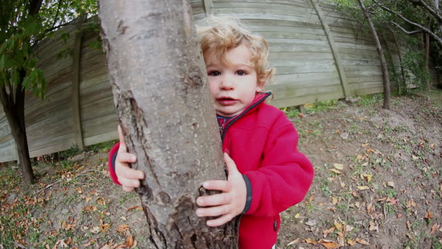 CU ZO Little boy trying to shake tree / Mississauga, Ontario, Canada
