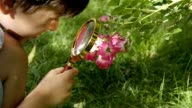 Little boy with a loupe looking at flowers - Stock Video