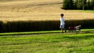 Little boy with a red wagon, country road