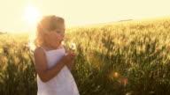 Little girl blows dandelion