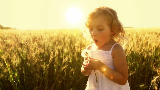 Kleines Mädchen bläst immer Pflanzensamen