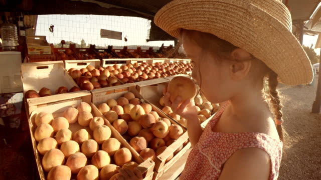 Little Girl Choosing Fruit At Farmers Market. Summer Resort