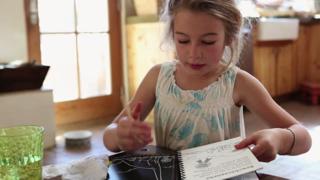 MS Little girl coloring in her colouring book / St. Simon's Island, Georgia, United States