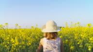 HD STEADY SHOT: Little Girl Gathering Canola Flowers