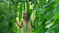Little girl inside the greenhouse
