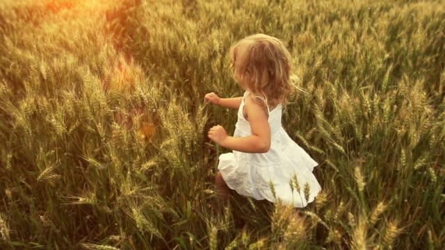 Little girl runs through wheat field