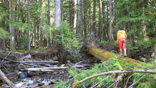 Little Girl walking across log bridge in forest