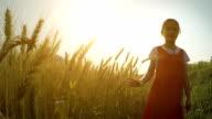 Little girl walking in Wheat
