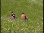 Local family walking in flower field, Carpathian Mt., Romania