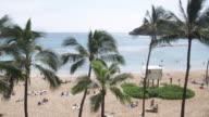WS, Lockdown, View of a palm trees and a beach, Honolulu, Hawaii, USA