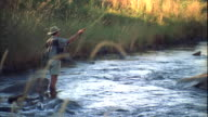Locked off long shot of a man standing in the middle of a creek fly fishing