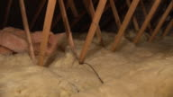 Loft / Attic Insulation HD1