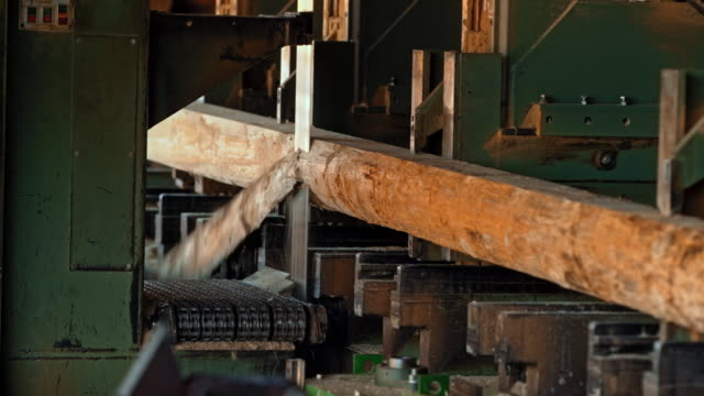 Log being cut by a vertical saw in a lumber mill