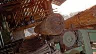 SLO MO Log feeder hoisting logs