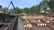 MS Log lift crane and forklift moving at lumberyard at saw mill / Schweich, Rhineland Palatinate, Germany