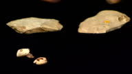 London GIR INT Close Shot Two ancient sea shells with holes in middle which date from 100000 years ago and finger pointing at them Professor Chris...