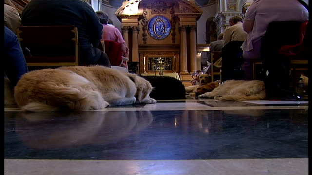 London Guide Dogs 75th year celebrations / general views of people and guide dogs at special church service A blind woman standing reading at a...