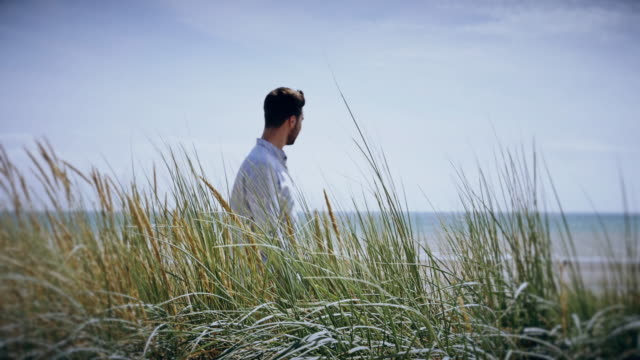 Long grass blowing, contemplation. Young man walking then standing.