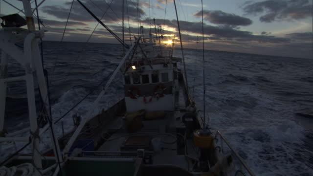 Long line fishing boat bobs on ocean at sunrise, New Zealand