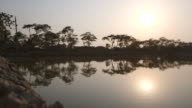 Long shot of a cars travelling along the side of a lake in Bangladesh.