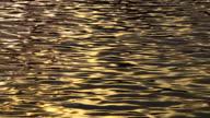 Long shot of rippling water at dusk.