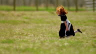 long shot PAN PROFILE redhead girl in black dress jumping + running in green field / fence in background / Montana