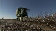 Long Shot push-out - A farmer drives a tractor through a field of cotton. / Oklahoma, USA