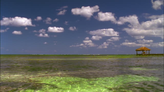 Long shot scattered white clouds in blue sky over clear green waters of Caribbean / Ambergris Caye, Belize