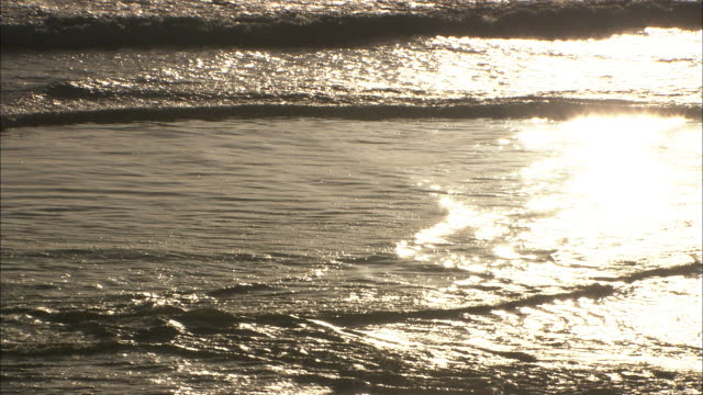 Long Shot tilt-up - Sunlight reflects off waves as they wash against a rugged Pacific Ocean coastal area/Oregon, USA
