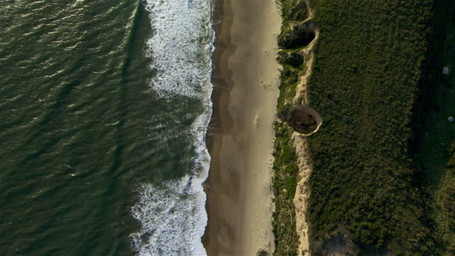 Long waves, sandy beach and verdant cliffs seen from directly overhead in Point Reyes National Seashore.