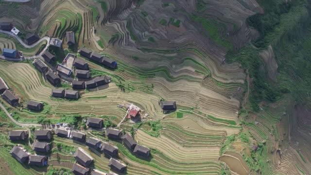 Longji Terrassenfelder in Longsheng