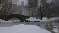 Long-shot of Gapstow Bridge in Central Park, during a winter snow storm.