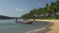 Longtail boat at beach with palm trees