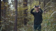 Looking in forest
