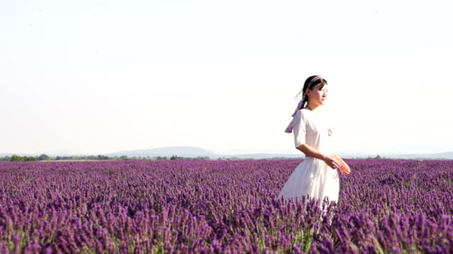 looking to the future in lavender field