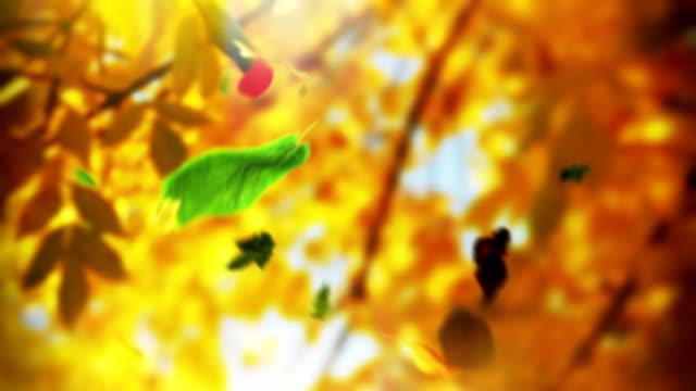 Schleife Herbst Baum Blätter fallen nach unten in einem park