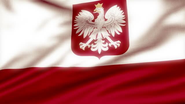 Loopable Polish Flag