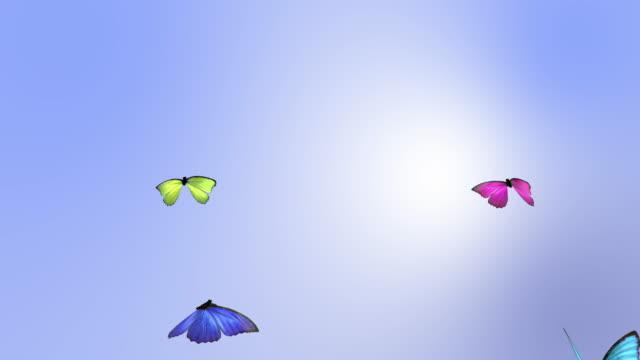 Vlinder animatie in een lus