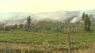 Los intensos incendios forestales que han devastado cientos de miles de hectareas en Chile se encuentran bajo control principalmente en las zonas del...