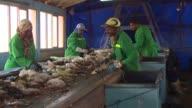Los recolectores de basura estaban mal vistos en Marruecos hasta que un proyecto para reducir las emisiones de gas invernadero un 13% para 2020 les...