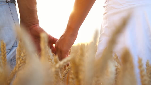 HD: Loving Couple Holding Hands In Wheat Field