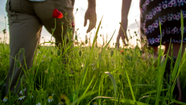 CU TS Liebespaar zu Fuß In Mohn-Feld