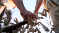 HD SUPER SLOW-MOTION: Loving Couple Walking In Wheat Field