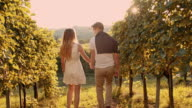 Loving couple walking through the vineyard