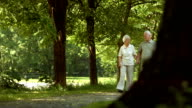 HD DOLLY: Loving Senior Couple Walking In The Park
