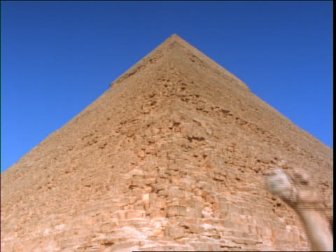 low angle close up of man in turban riding camel past pyramid in background / Giza, Egypt