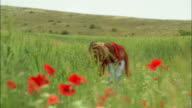 Low angle close up poppies/ rack focus medium shot woman walking in field, bending down to touch flowers/ pan poppies/ Norcia