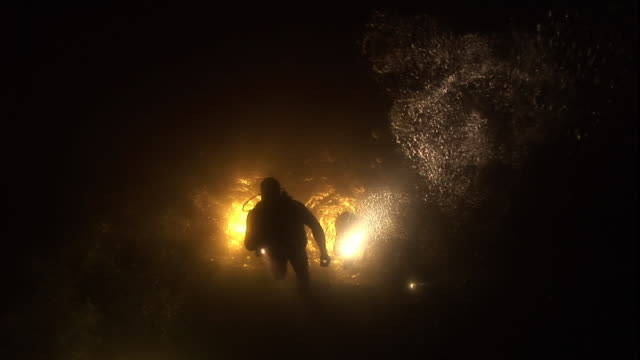 Low Angle hand-held - Divers use flashlights to navigate dark waters.