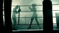 Low angle LS of Male and Female Boxer training together.