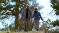 Low angle medium shot senior couple walking and holding hands w/picnic basket